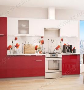 Кухня Премьера Витрина 600