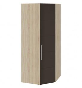 Угловой шкаф для одежды правый «Ларго Люкс» СМ-181.07.013 R