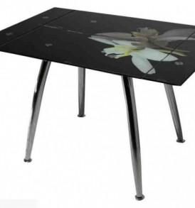 Стол обеденный ТВ-005 (Орхидея) 1_enl