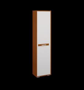 Детский шкаф-стеллаж с полками для книг «Орион» ПМ-109.02