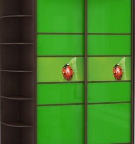 2-х дв,корпус Венге, двери стекло цветное, фотовставки 22050